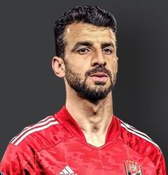 Mahmoud Metwaly