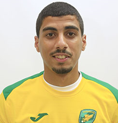 Ali El Ogamy
