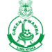 Green Mamba FC